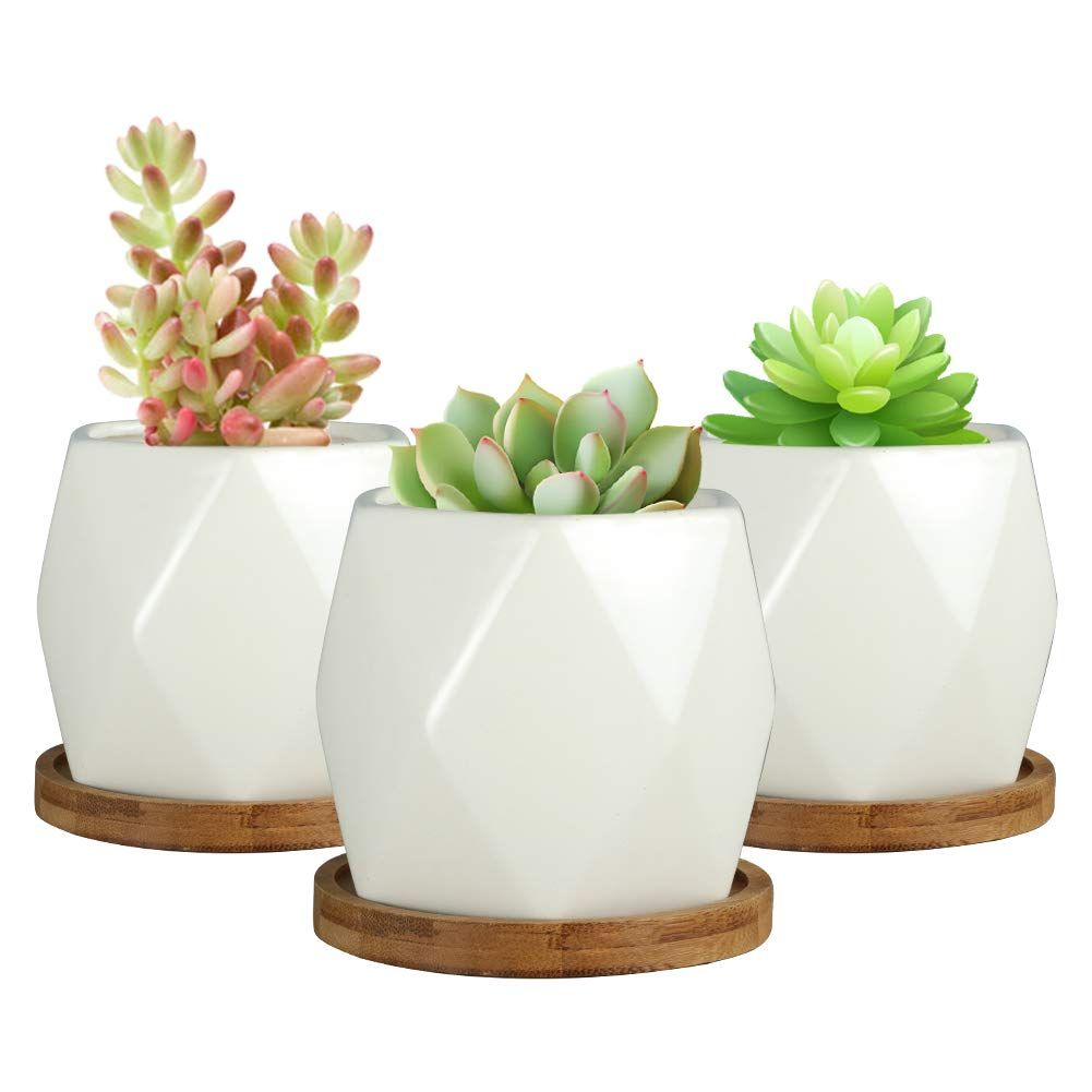 Sqowl 4 Inch Ceramic Succulent Planter Pot Modern Cactus Herb Flower Planters With Bamboo Tray Indoor Ceramic Succulent Planter Ceramic Succulent Planter Pots