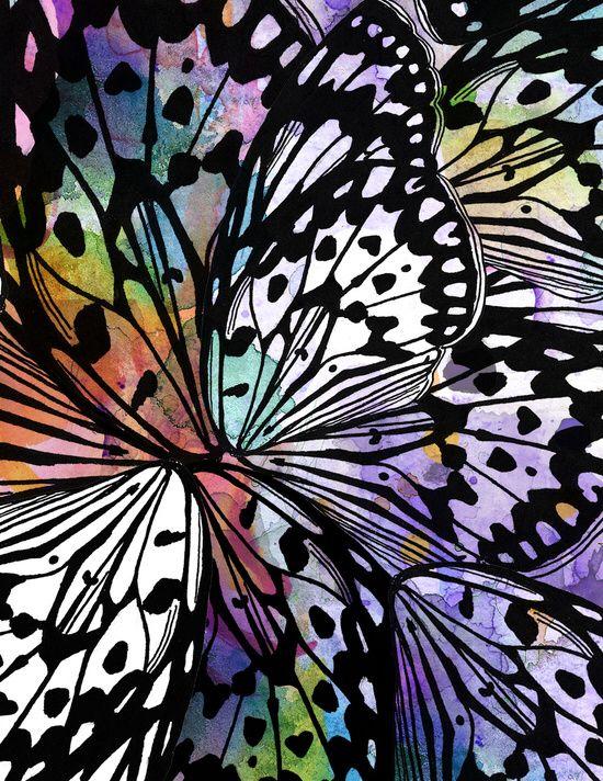 Check Out Society6 Post By Jen Merli Jenmerli Titled Butterfly