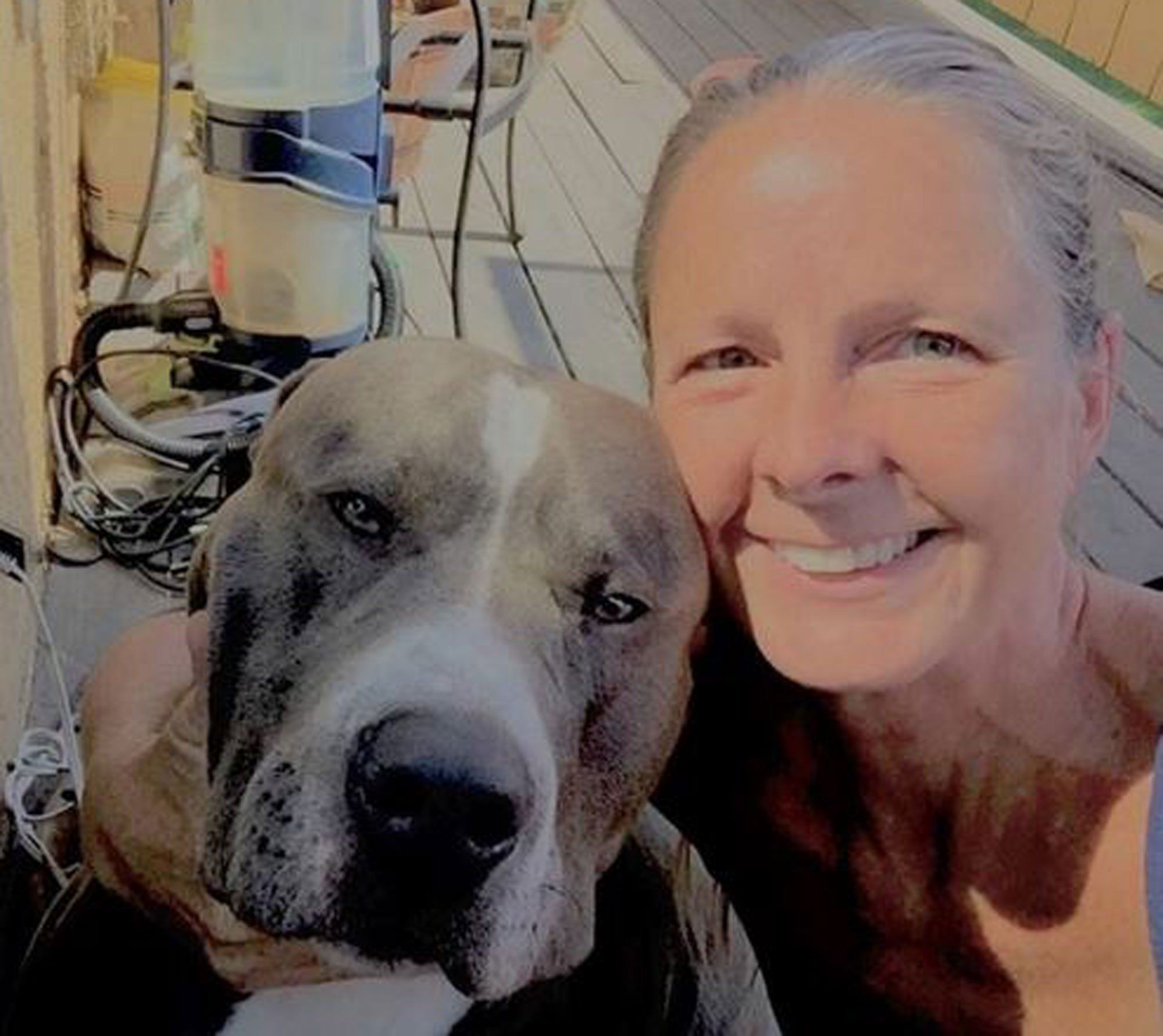 awesome UPS Driver Adopts Dog After Owner Dies Dog