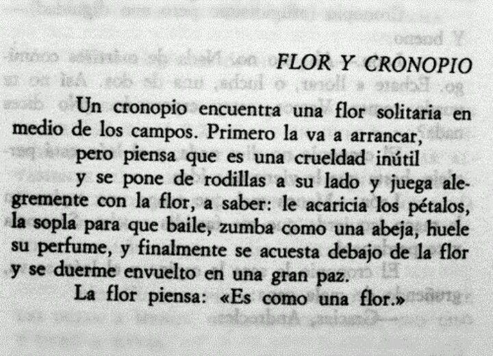 Flor y Cronopio  - Julio Cortazar