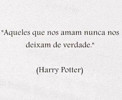Aqueles Que Nos Amam Nunca Nos Deixam De Verdade Harry