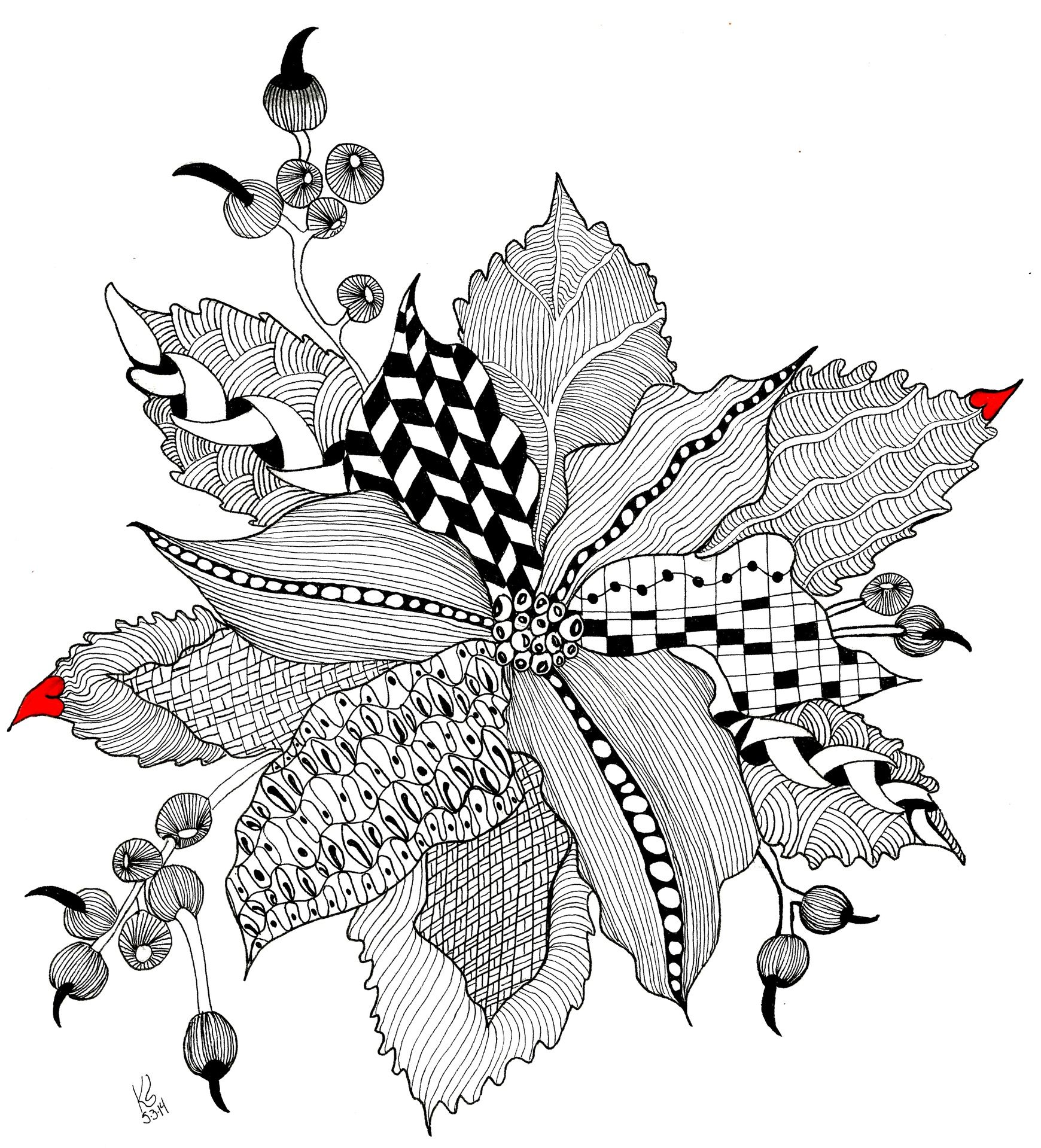 One Poinsettia Black and White | Art: B1- ZIAs, Doodles, | Pinterest ...
