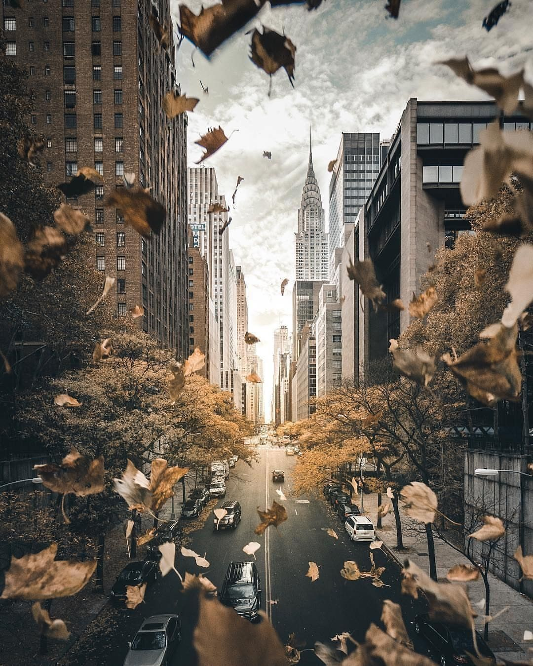 Fall Season Nyc Wallpaper City Wallpaper New York Wallpaper Autumn In New York