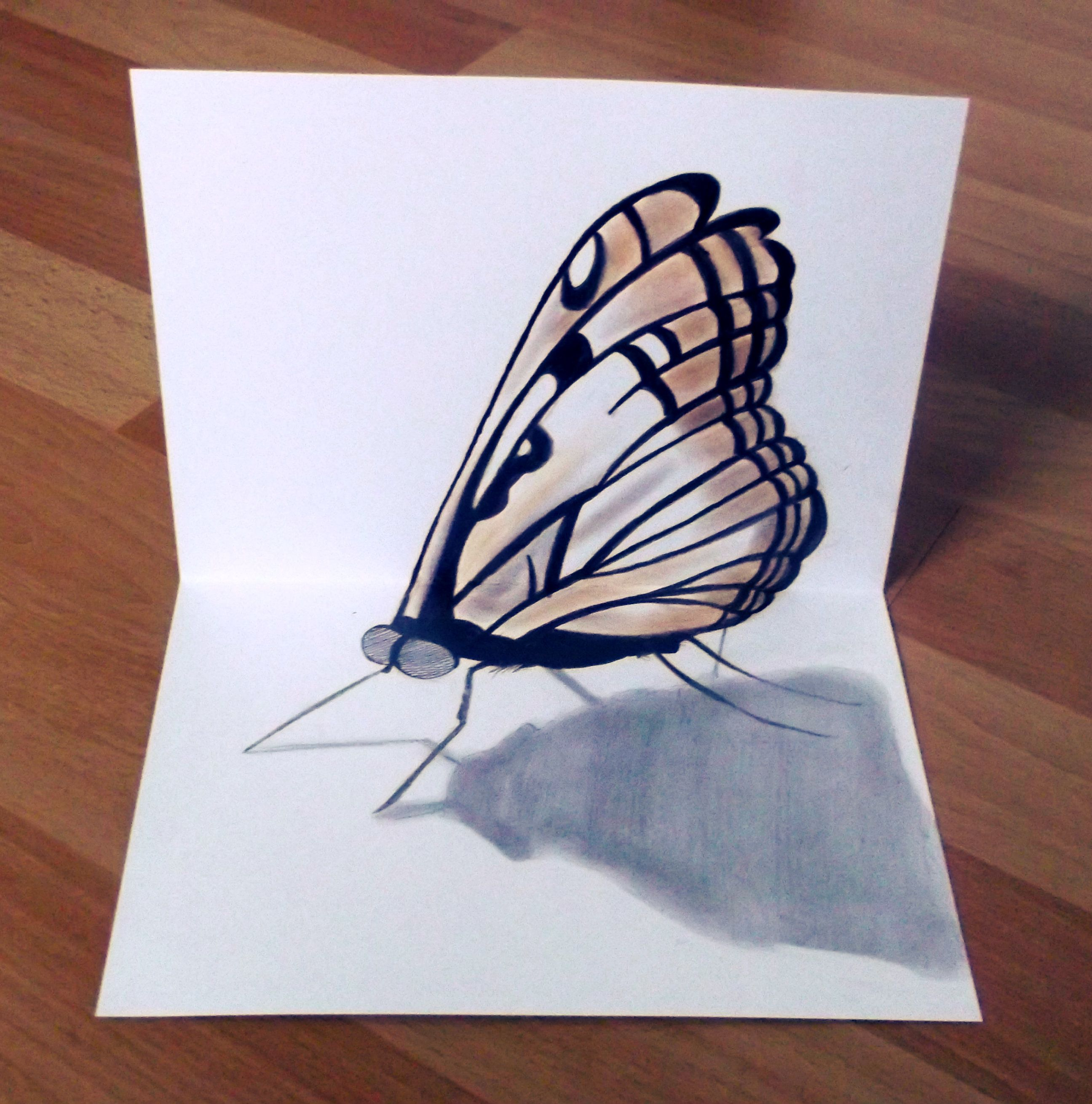 3d butterfly 3d pencil drawing 3d pencil drawings drawings