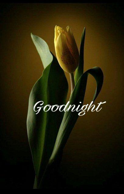 Love good nite image ,  #good #image #love #nite