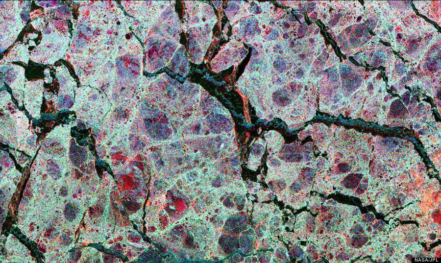 photo microscopique -