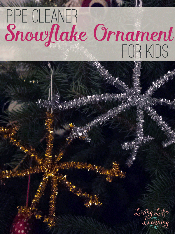 26++ Snowflake ornament craft pipe cleaner ideas in 2021