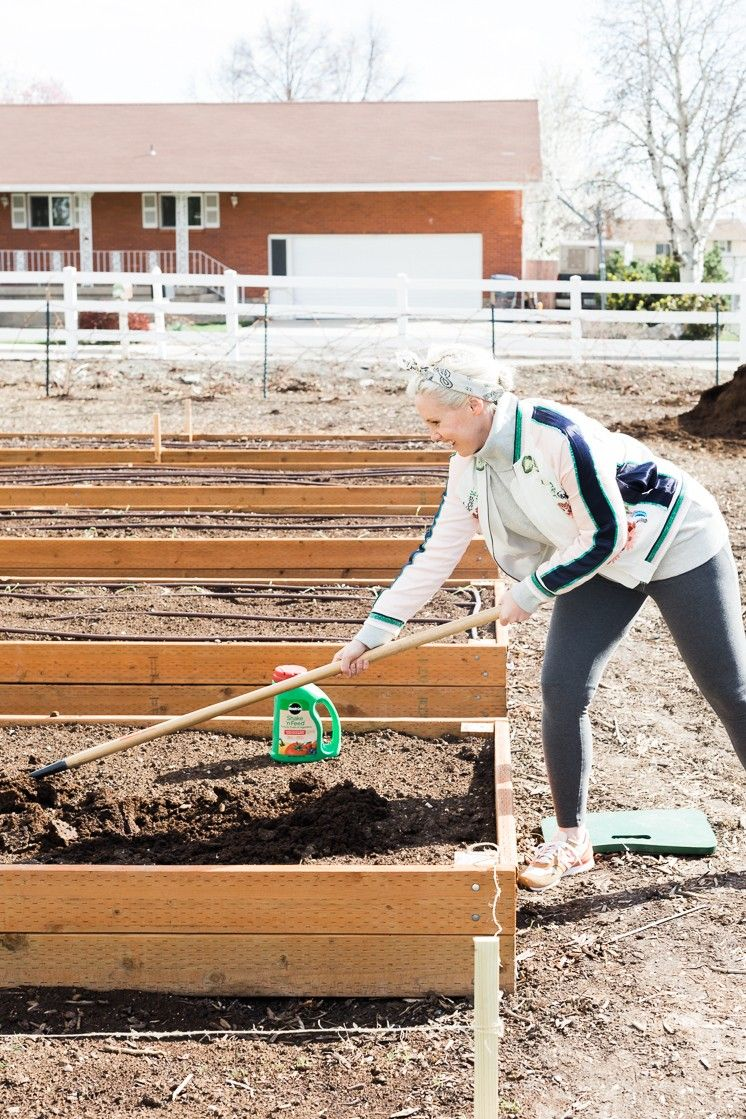 Pin on MiracleGro Plant Food Has Everything Your Summer