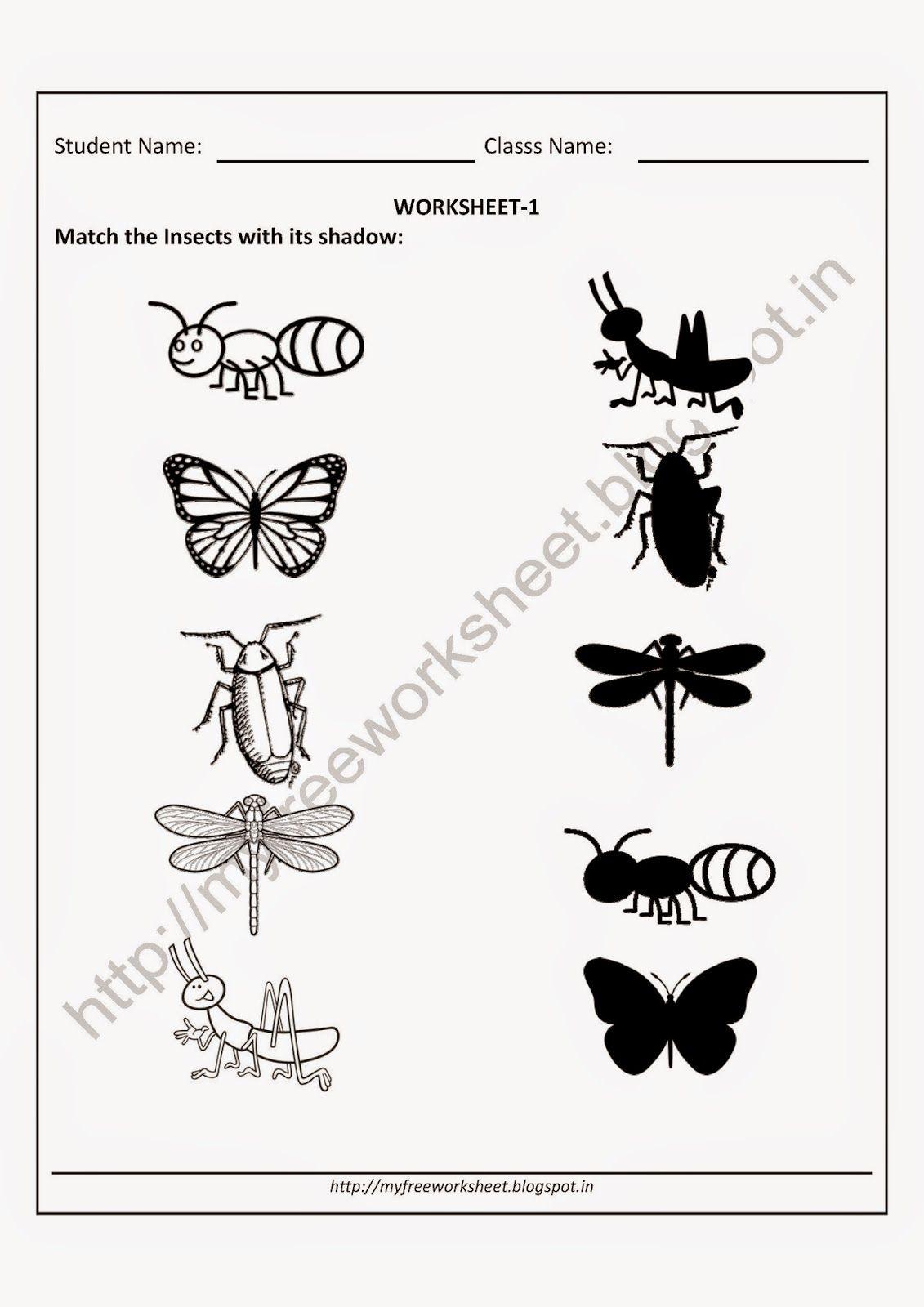 Prek-kinder-math-cut-and-fun-printable-worksheets-early-childhood ...