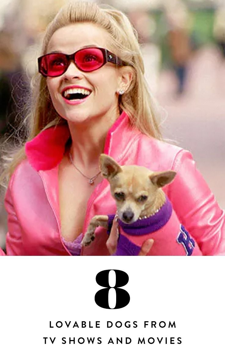 Pink Evolution: From Legally Blonde to Legitimately High Fashion pics