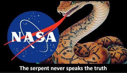 Image result for pic of snake tongue NASA