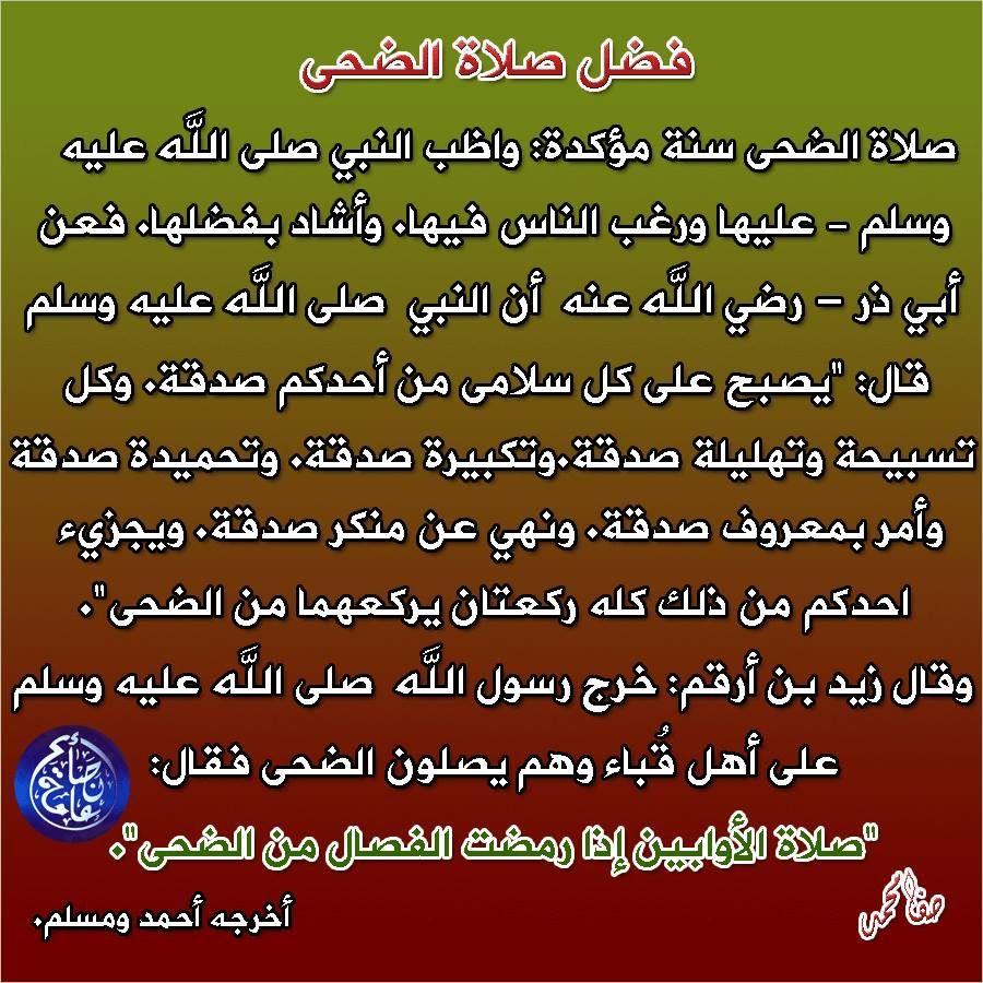 صلاة الضحى Arabic Calligraphy Calligraphy