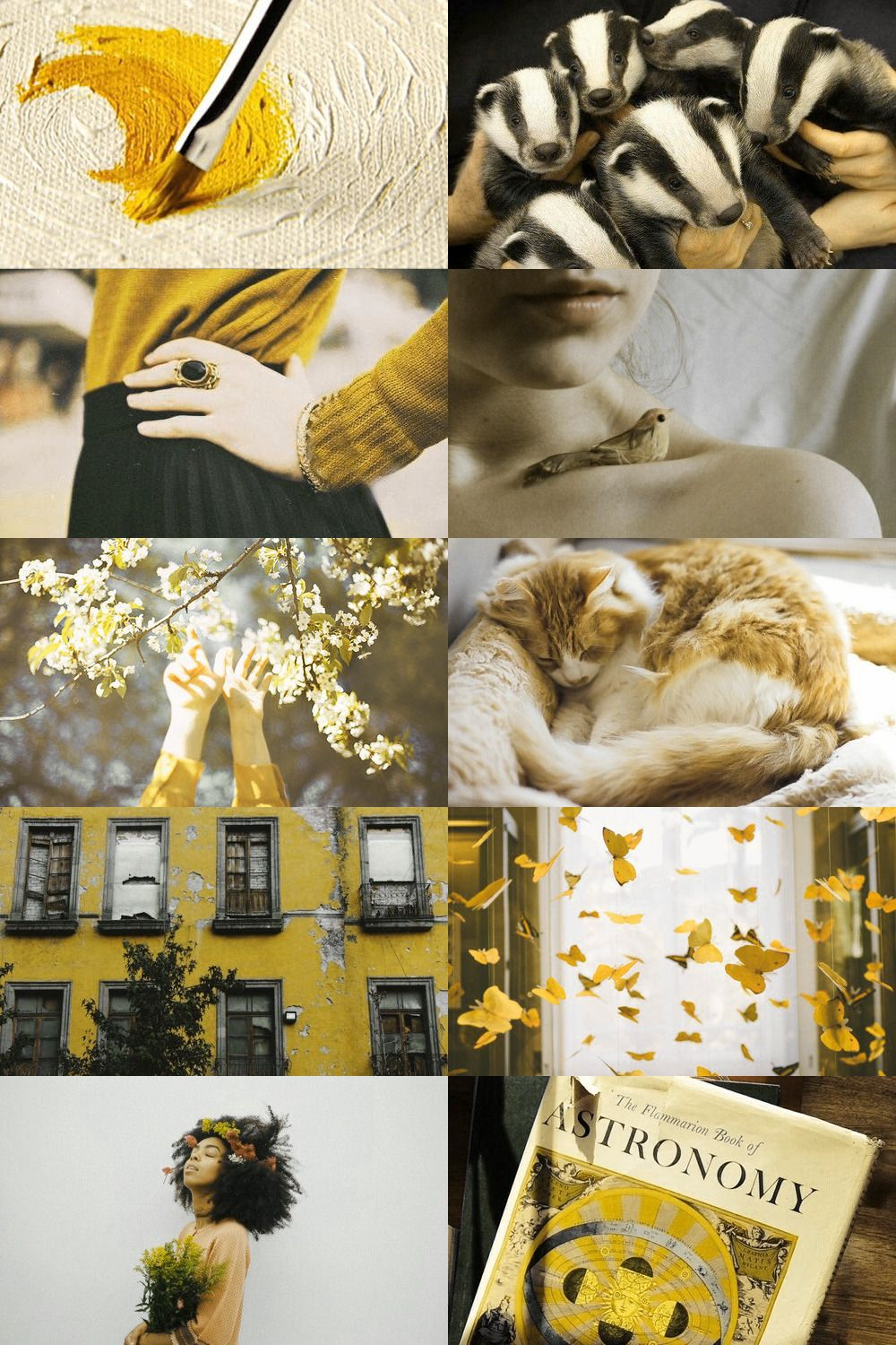 Hufflepuff Aesthetic Again With The Amazing Aesthetics And Those