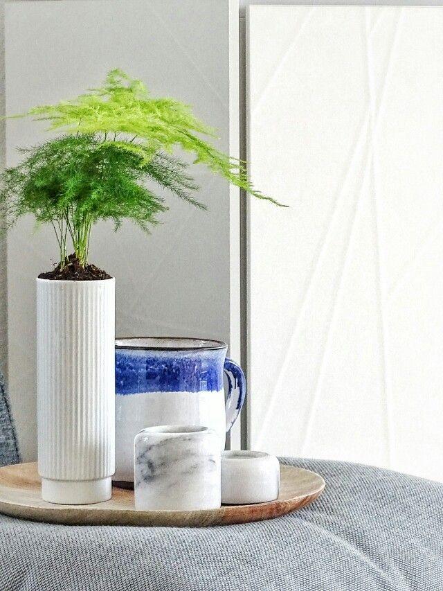 Grün auf Weiß Herbst dekoration, Vasen und Pflanzgefäße - wohnzimmer dekorieren grun