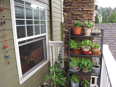Herbs On A Shelf On Your Balcony Balcony Herb Gardens 400 x 300