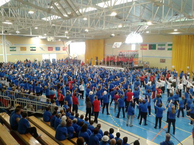 El viernes 14 de noviembre en el Municipio de Alhaurín el Grande, se reunieron 1.389 mayores de 61 municipios de la Provincia., a los que acompañaron más de 80 técnicos de deportes de los distintos municipios asistentes, voluntarios de Alhaurín el Grande, voluntarios de los módulos de técnico Superior de Actividades Deportivas de los Institutos Fernando de los Ríos y La Rosaleda, técnicos de la Delegación de Deportes, y de mantenimiento