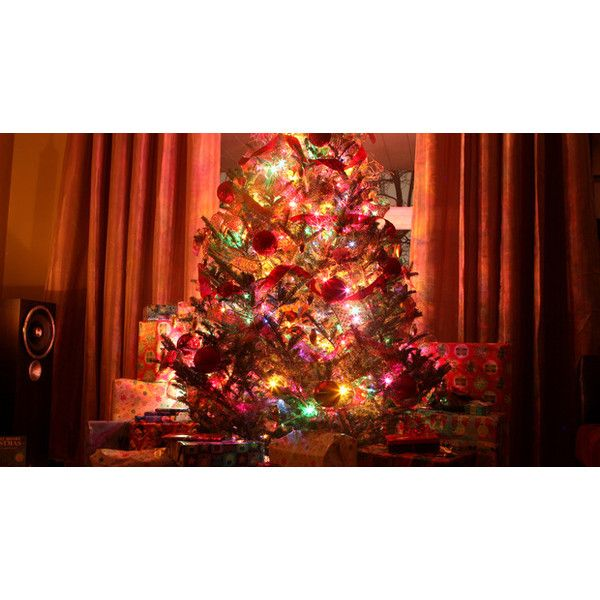 five star christmas tree co gilt city national liked on polyvore featuring home