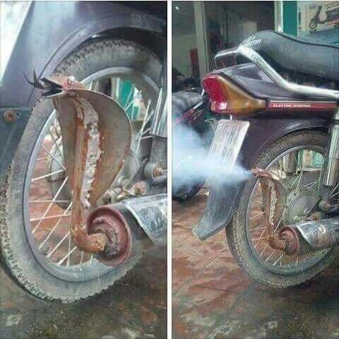 Funny Lol    This Motorcycle Exhaust Seen In India Daily Funny Jokes