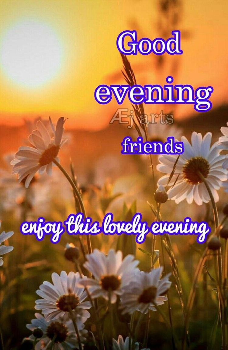 Good Evening Good Night Good Evening Blessings Pinterest