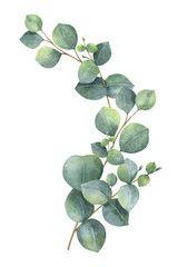 Photo of Watercolor vector wreath with green eucalyptus leaves and branches. – kaufen Sie diese Vektorgrafik und finden Sie ähnliche Vektorgrafiken auf Adobe Stock