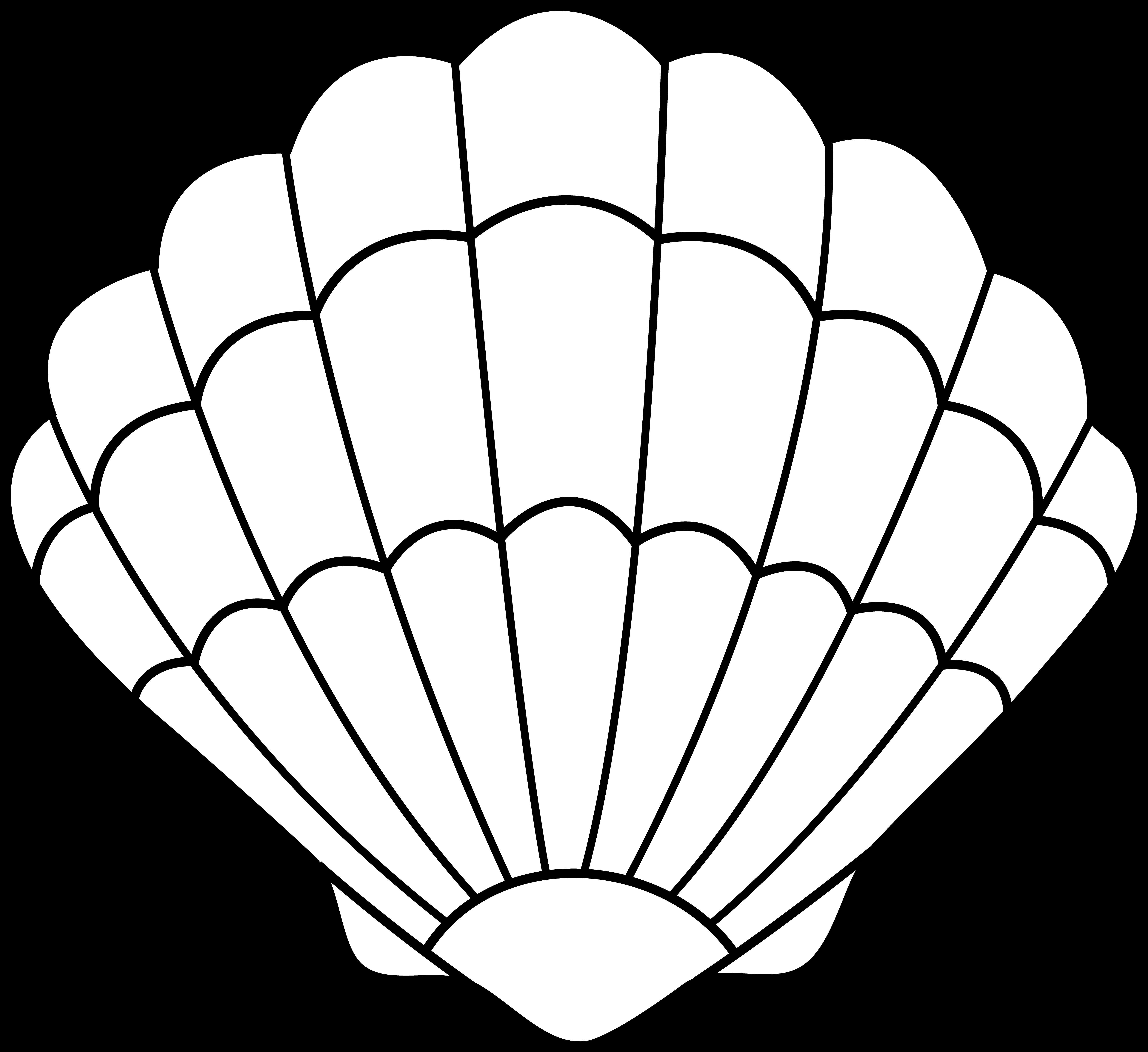 Colorable Seashell