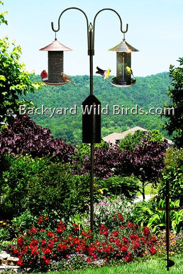 Bird Feeder Pole System S2 At Backyard Wild Birds