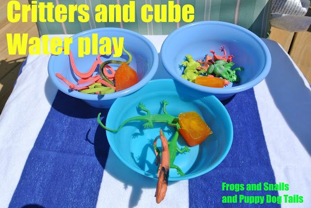 Critter and Cubes-  water play