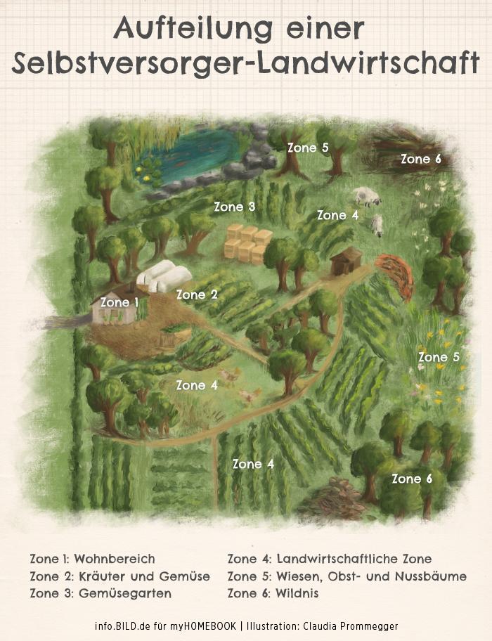 Mit einer Permakultur mehr aus dem eigenen Garten rausholen