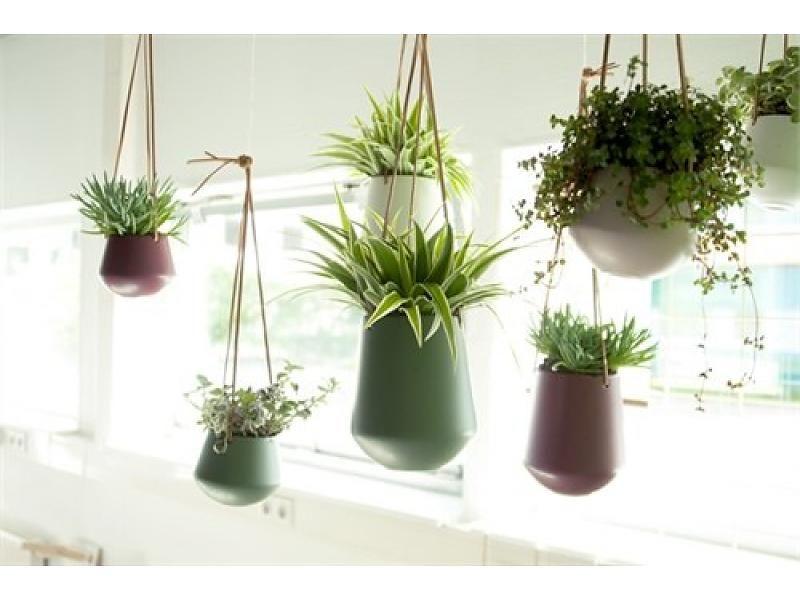 15x Eucalyptus Huis : Present time hangende bloempot small wit style & interior