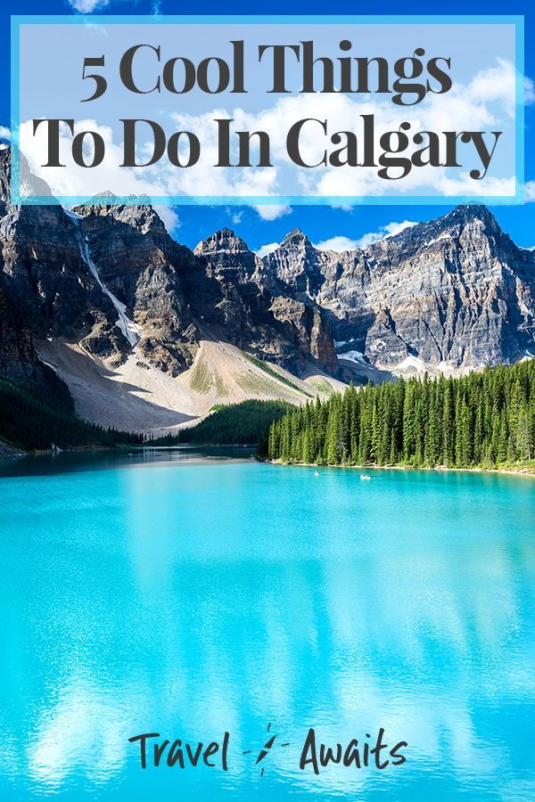 5 Cool Things To Do In Calgary #style #shopping #styles #outfit #pretty #girl #girls #beauty #beautiful #me #cute #stylish #photooftheday #swag #dress #shoes #diy #design #fashion #Travel