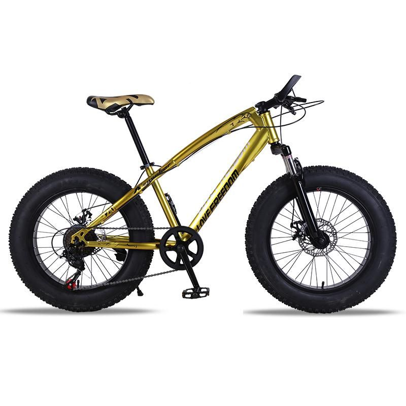 Pin On Fat Bike