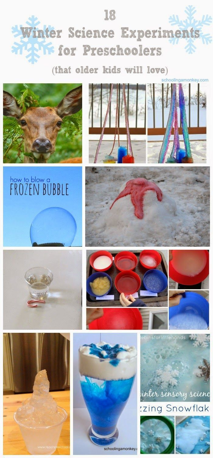 Winter Science Experiments for Preschool #scienceexperimentsforpreschoolers