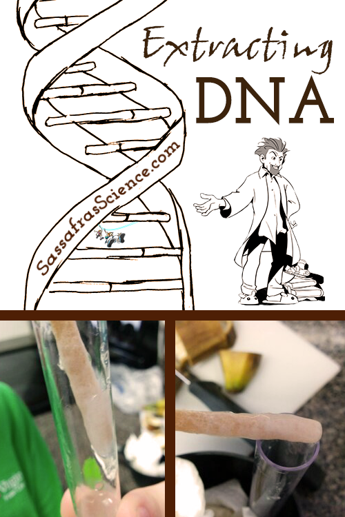 naked Dna scirnce fruit from