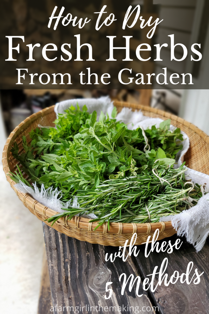 How To Dry Fresh Herbs From The Garden With These 5 Method In 2020 Drying Fresh Herbs Herbs Herbal Vinegar