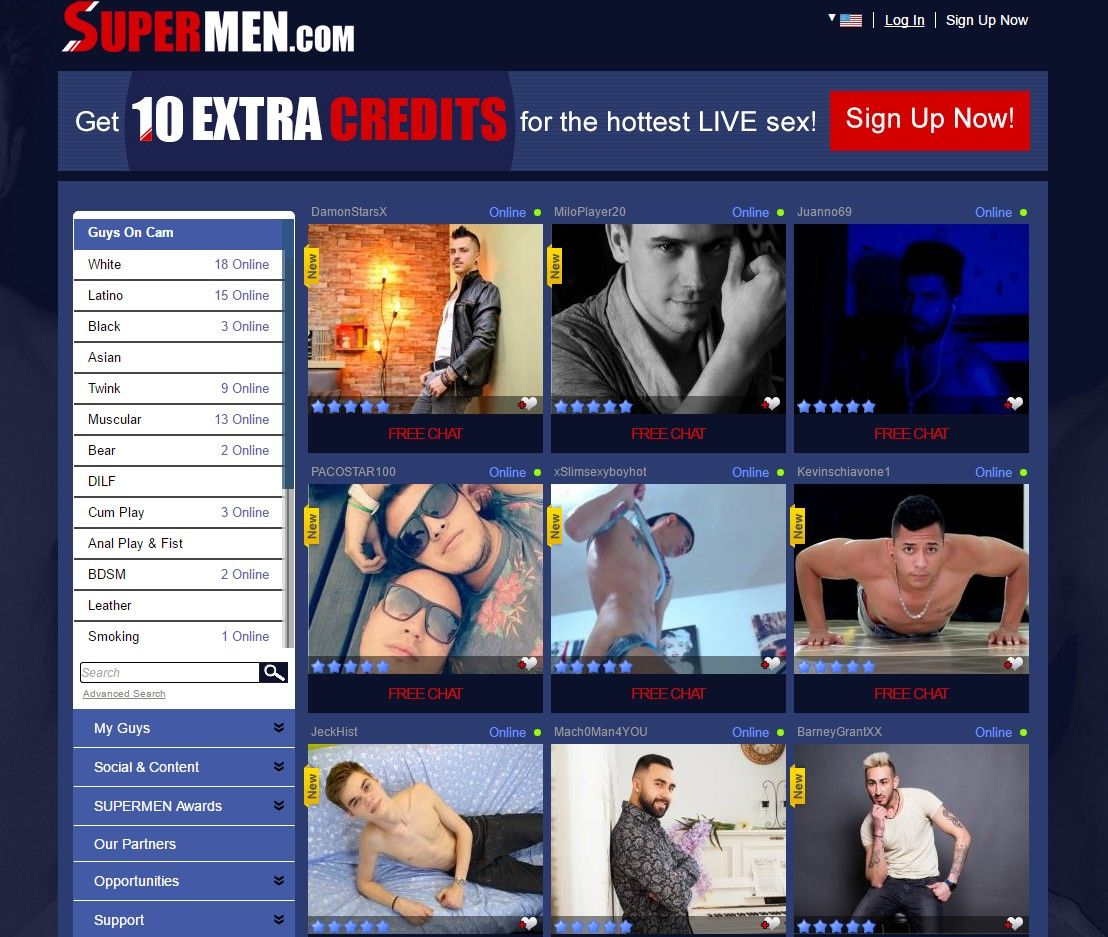 Gay web cam chat