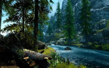 Forest And River Nature Forest Tranquil River Scenic Painting Forest Wallpaper River Forest Forest Photos