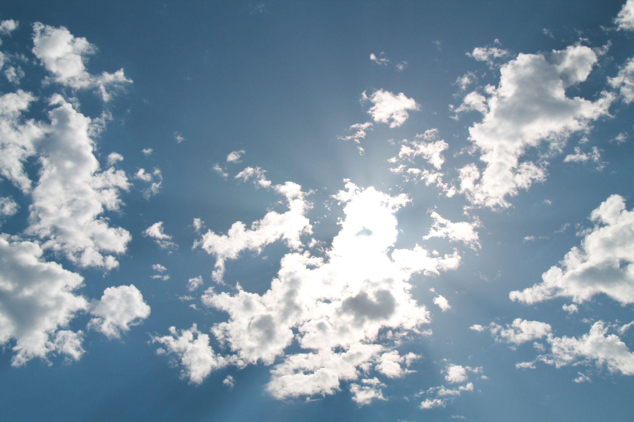 Winter in California/Blue Sky