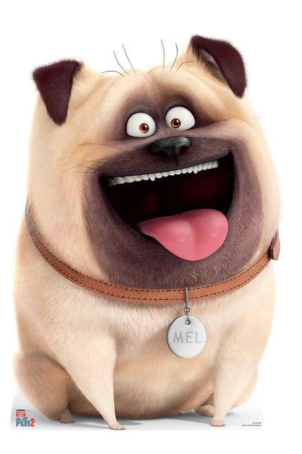 Mel Pug Dog From The Secret Life Of Pets 2 Cardboard Cutout Standup Desene