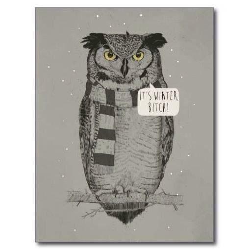 Look, it's Rick James the Owl....