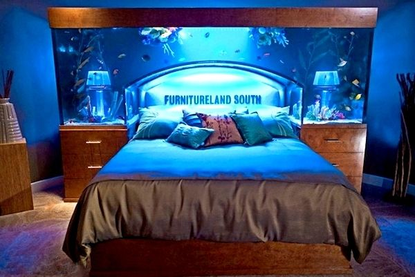 Captivating Fish Tank Bedroom | Terms Exotic Fish Tanks Fish Tank Bed Aquarium Bedroom  Bed Fish Tanks .