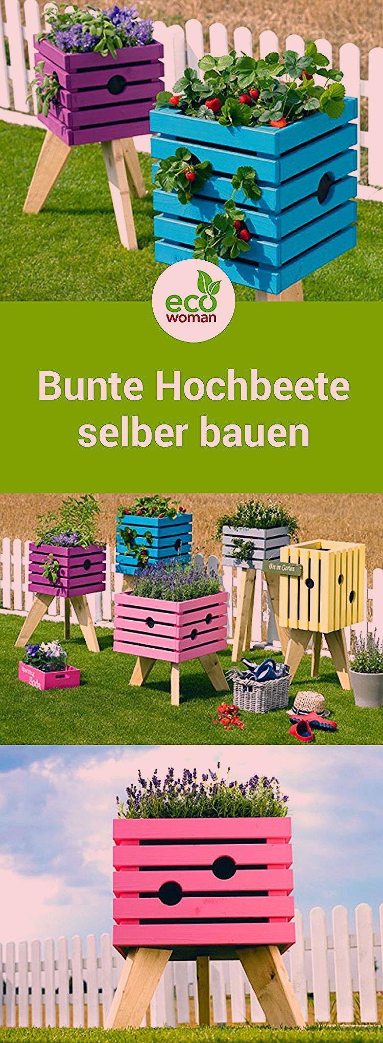 Photo of Bunte Pflanzenkisten für den Garten oder Balkon