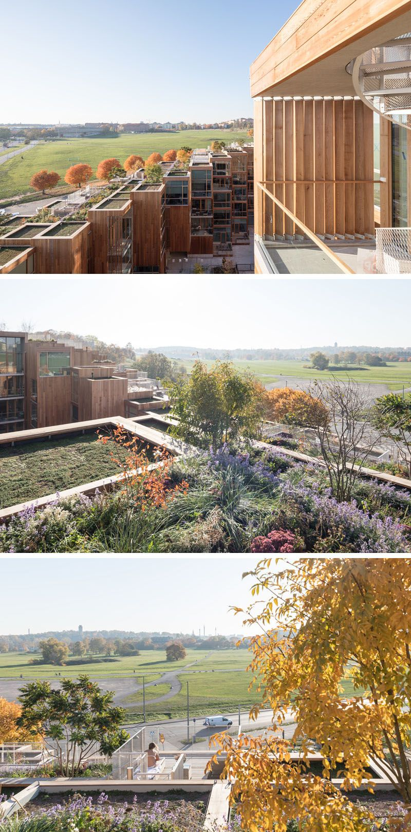 Big Have Completed 79 Park In Stockholm Green Roof System Green Roof Architecture