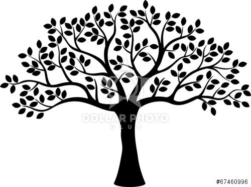 Dollarphotoclub Stock Photo Tree Silhouette