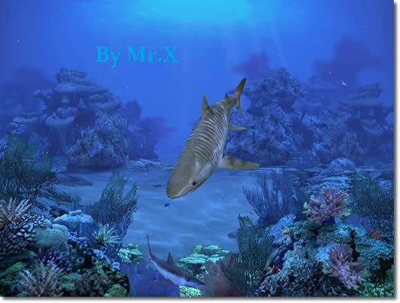 Descargar fondo pantalla gratis acuario peces 3d - Descargar fondo de pantalla en movimiento gratis ...