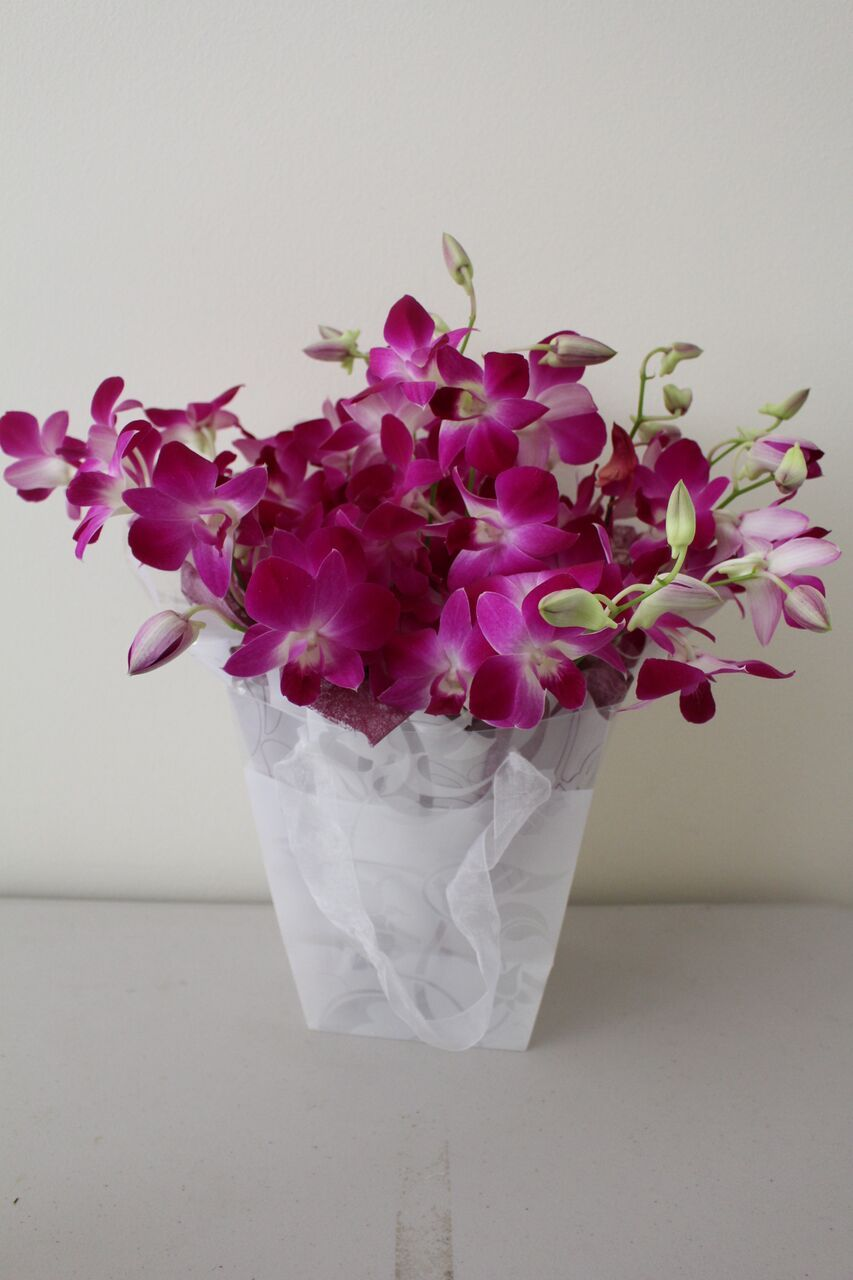Melbourne Fresh Flowers Is Online Flower Delivery Service Provider