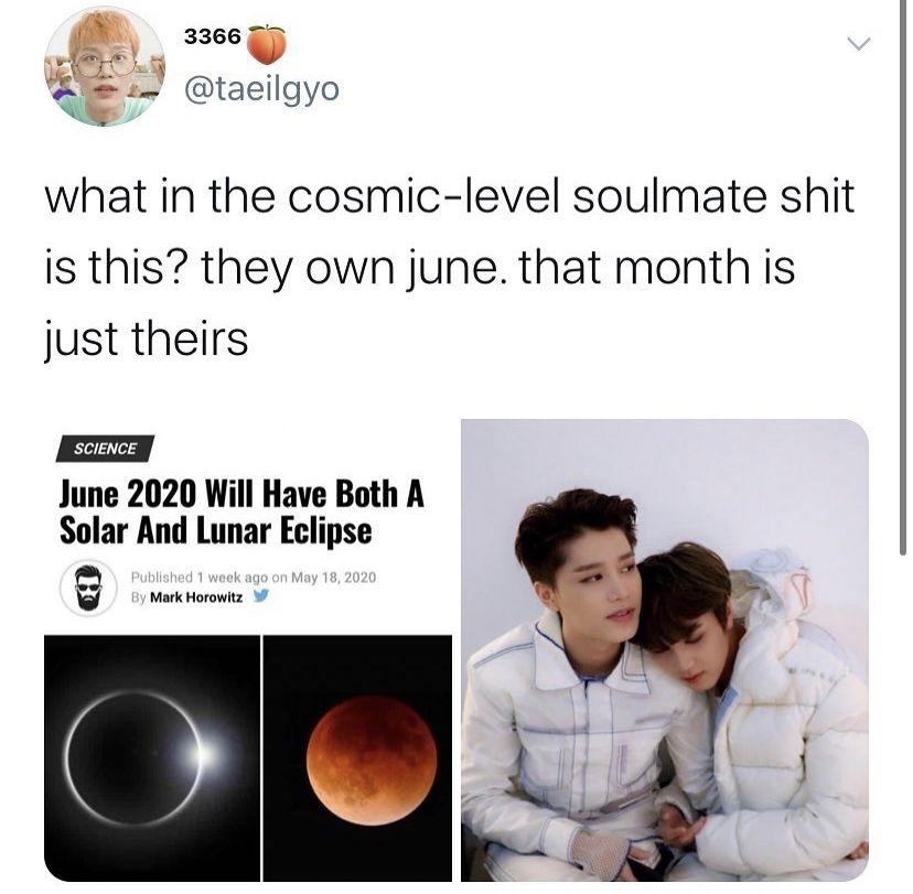Nct Meme In 2020 Funny Kpop Memes Nct Nct Dream