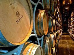 Sassicaia cellar