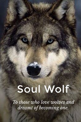 Pin By Cem Ren On Operation Wolf Pinterest Wolf Animal And Wolf