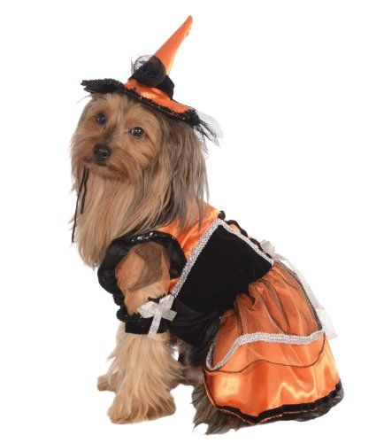 Pin By Annette Meyer On Into The Void Pet Halloween Costumes