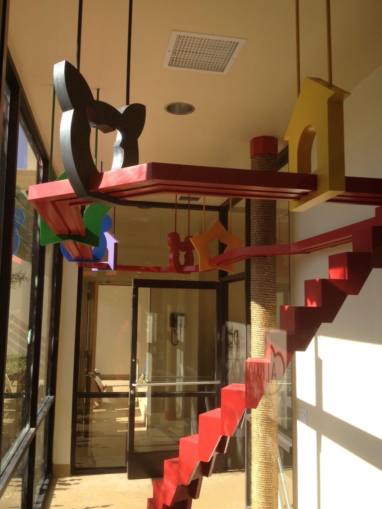 Alicia Pet Care Center Mission Viejo, CA Rauhaus